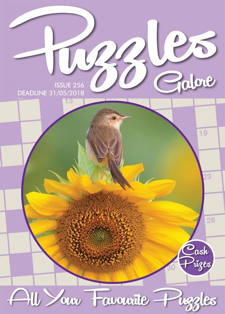 Puzzles Galore 256 cover